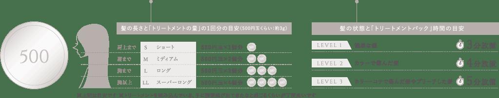 「トリートメントの量」の目安は500円玉くらい:約3g